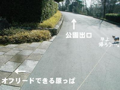 2009020607.jpg