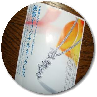 DSC01947_convert_20100713211600.jpg