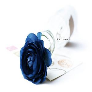 blue_f01m_convert_20110708201823.jpg