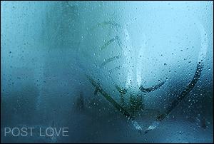 DSC_1452-rain.jpg