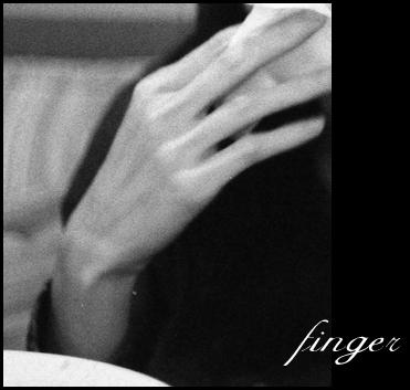 fing-2009.jpg