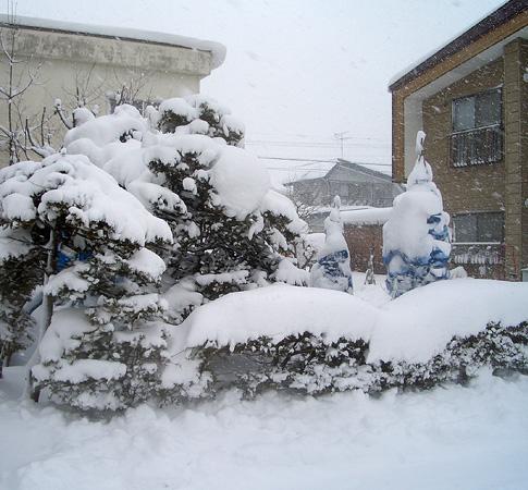 08大雪01