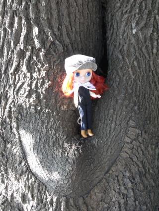 私は森の妖精