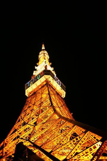 東京タワー_081218