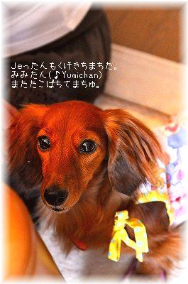 _DSC7839.jpg