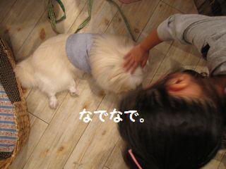 latte-1402_20090919170913.jpg