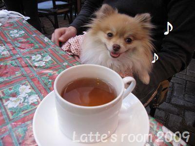 latte-1937.jpg