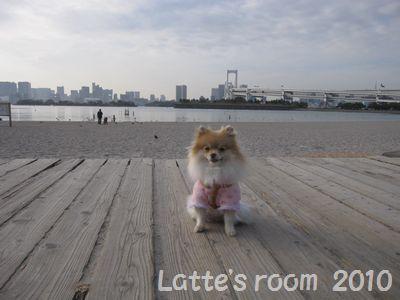 latte-2089.jpg