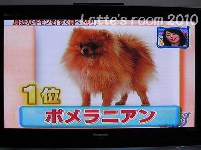 latte-2140.jpg