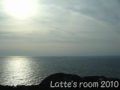 latte-2223.jpg