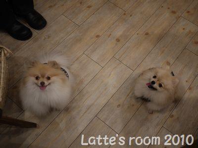 latte-2780.jpg