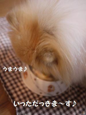 latte-2884.jpg