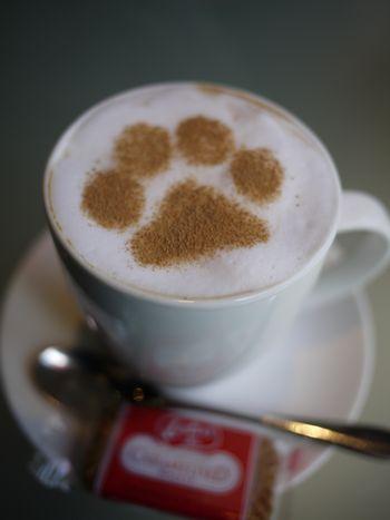 latte-3251.jpg