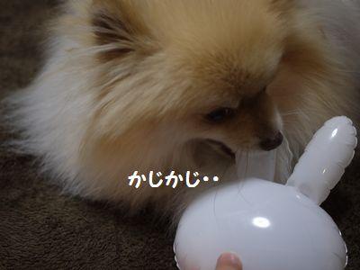 latte-3763.jpg
