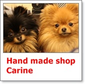 Hand made shop  Carine