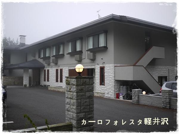 P1010118.jpg