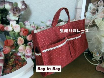 IMG_0036Bag in Bag