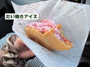IMG_0073たい焼きアイス