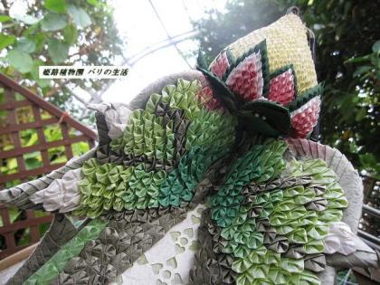 姫路植物園8