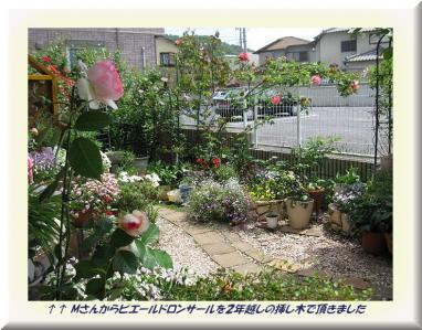 ピエールドロンサール と庭