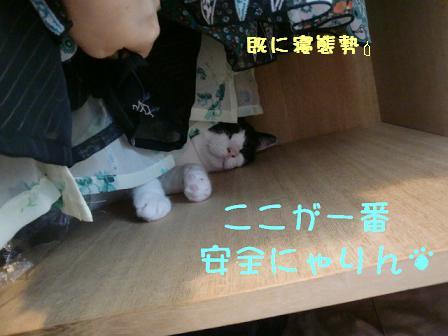 コピー ~ CIMG0778