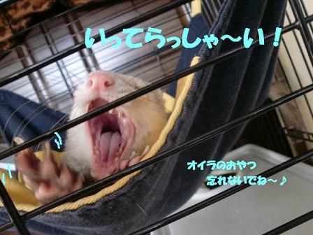 コピー ~ CIMG0475