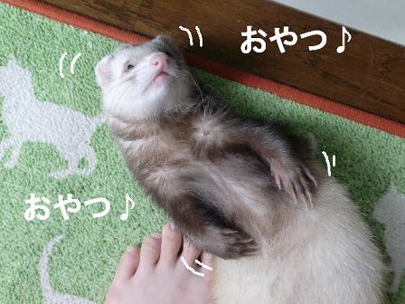 コピー ~ CIMG1024