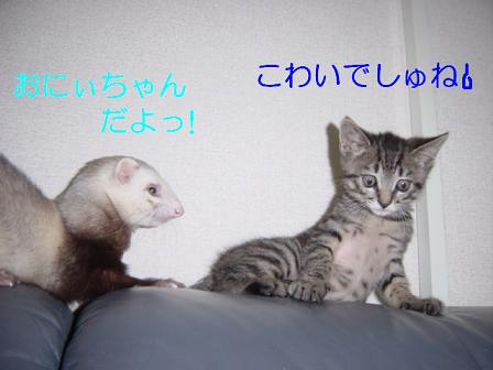 2008_05065月05日20280