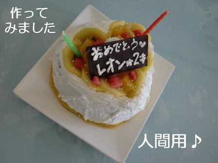 コピー ~ CIMG1048