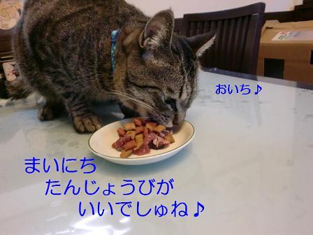 コピー ~ CIMG1061