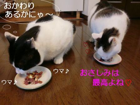 コピー ~ CIMG1062