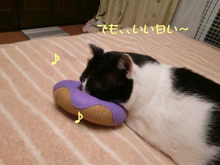 コピー ~ CIMG1150