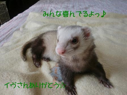 コピー ~ CIMG0887