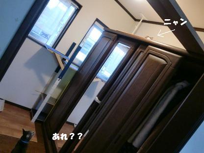 コピー (2) ~ CIMG1295