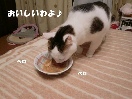 コピー ~ CIMG1374