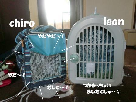 コピー ~ CIMG1630