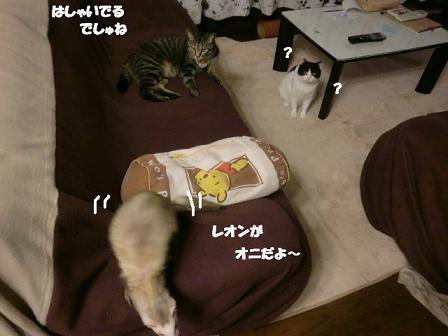 コピー ~ CIMG0206
