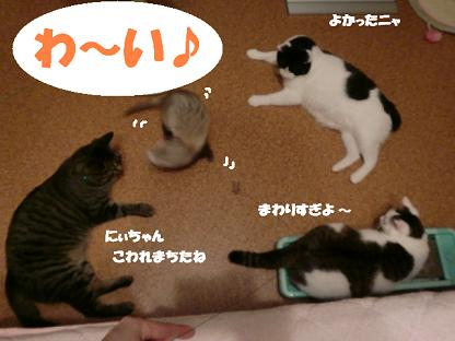 コピー ~ CIMG0632