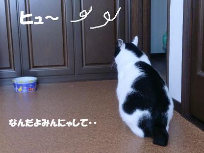 コピー ~ CIMG1461