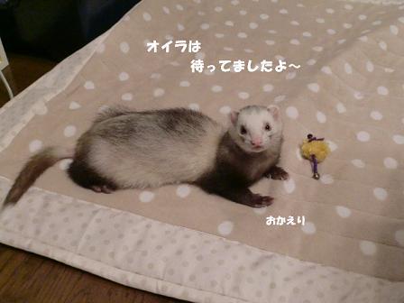 コピー ~ CIMG0465