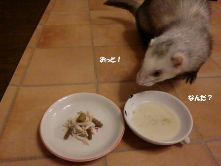 コピー ~ CIMG2896