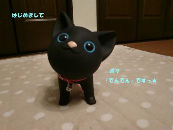 コピー ~ CIMG2589