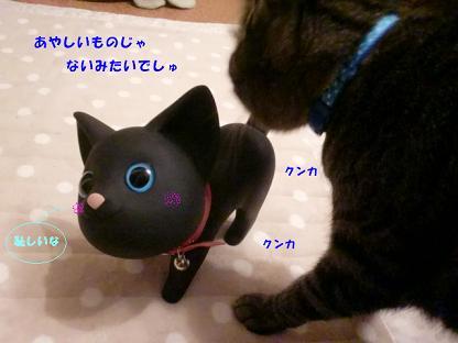 コピー ~ CIMG2583