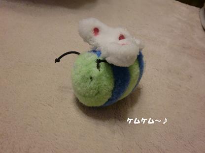 コピー ~ CIMG2205