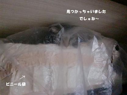 コピー ~ CIMG2671