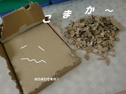 CIMG4347 - コピー
