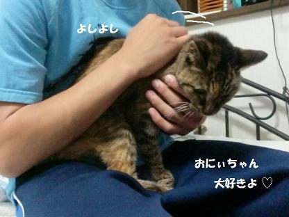 CIMG4616 - コピー