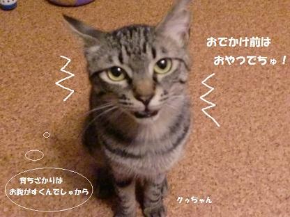CIMG4697 - コピー (2)