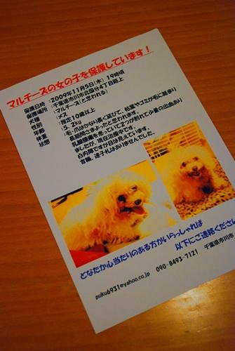 s-DSC_0004_20091111232906.jpg