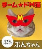 ドM猫バーナー